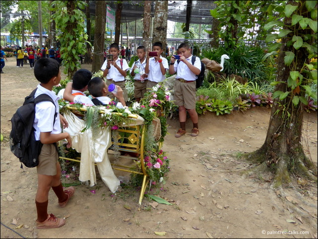 Bus loads of school kids attend the orchid festival. Most popular part of the exhibition are the flower arrangements.