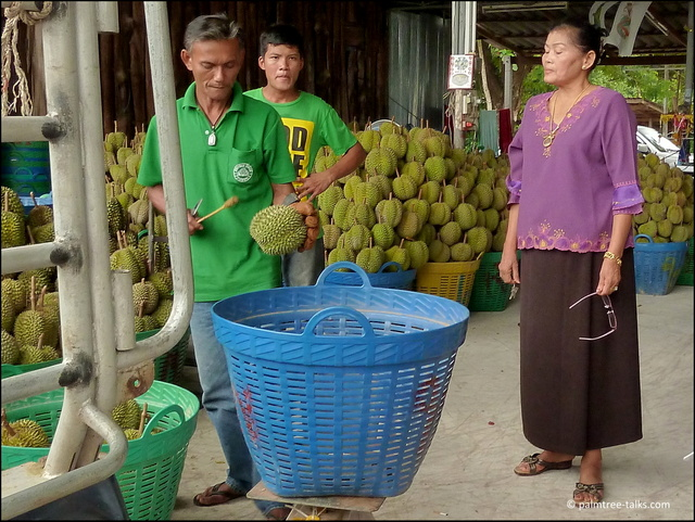 Under the watchful eye of the lady trader, her worker taps on the durian to check its ripeness.