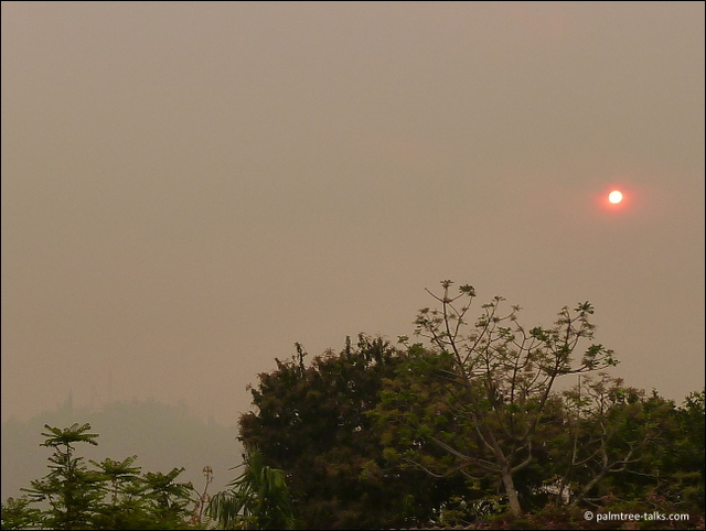 Haze, insoluble haze, all day long. Until the rains come to extinguish the fires.
