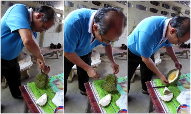 Time to taste some durian. Dr. Songpol is the first Thai I meet who takes it for granted that his foreign guest will appreciate the sweet, sticky flesh. He picks up his knife, skillfully cuts the husk and reveals the creamy, golden part inside.